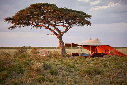 Mobile Safari Expeditions - Mess Tent